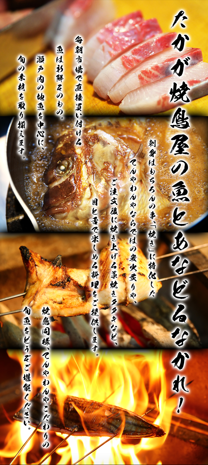 たかが焼鳥屋の魚とあなどるなかれ!毎朝市場で直接買い付ける魚は新鮮そのもの。瀬戸内の地魚を中心に、旬の素材を取り揃えます。刺身はもちろんの事、「焼き」に特化したてんやわんやならではの炭火炙りや、ご注文後に焼き上げる藁焼きタタキなど、目と舌で楽しめる料理をご提供します。焼鳥同様、てんやわんやこだわりの旬魚をどうぞご堪能ください。